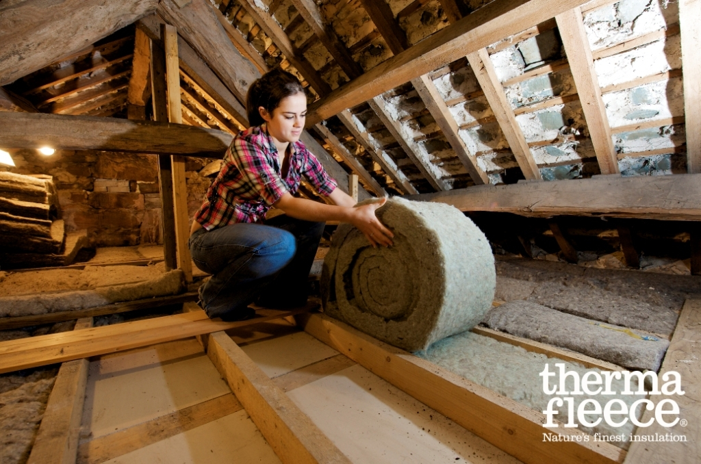 10 ways to save <br>energy in a <br>period home