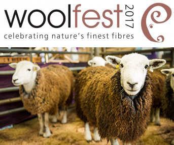 Celebrating the best <br>of British Wool <br> in Cumbria