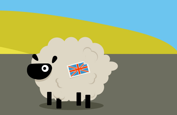 The Story of <br> British Wool and <br>the British Wool industry
